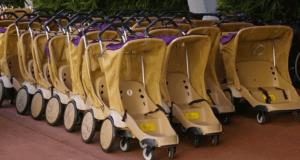 Disney Rental Stroller