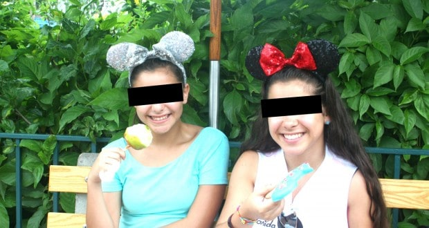 Nice Disney Fans