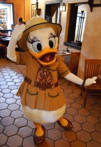 Tusker House Daisy Duck