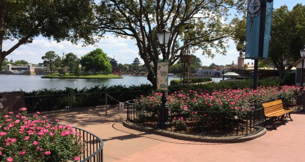 Serene view at EPCOT