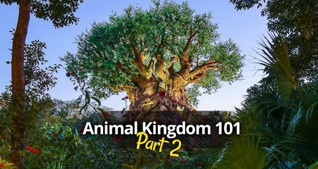 Animal Kingdom 101, Part 2