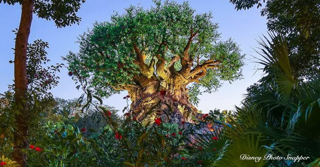 Tree Of Life - Animal Kingdom