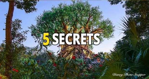 5 Secrets - Animal Kingdom