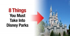8 Things You Should Take Into Disney Parks