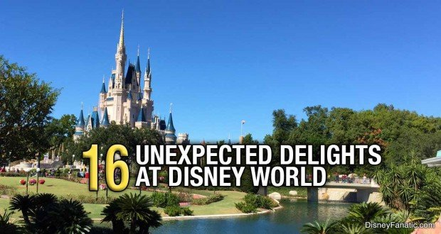 16 Unexpected Delights At Disney World