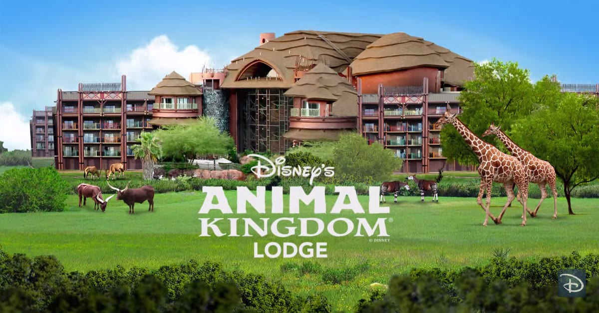 Animal Kingdom Hotel Reviews