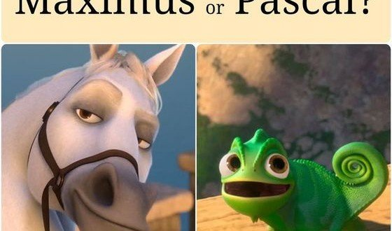 Are You More Maximus Or Pascal?
