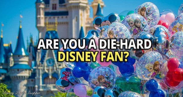 Die-Hard Disney Fan