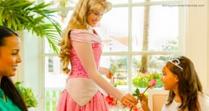 Aurora at The Perfectly Princess Tea
