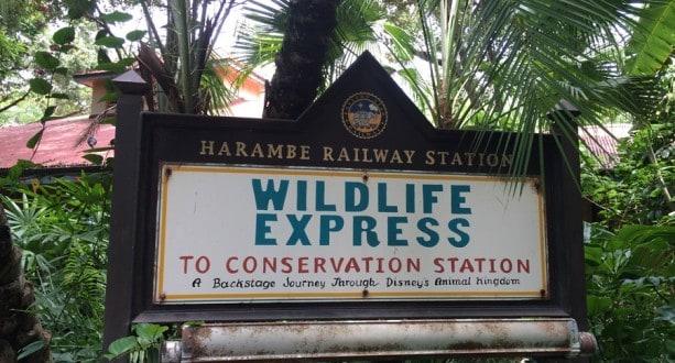 Wildlife Express