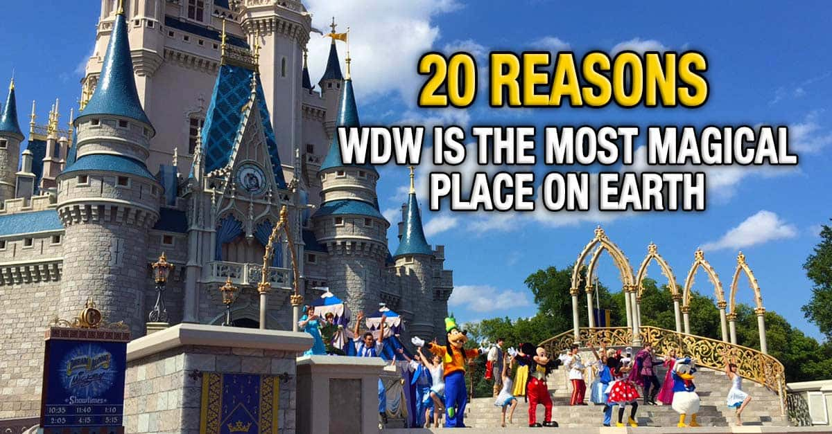 20 Reasons Walt Disney World Is The Most Magical Place On Earth