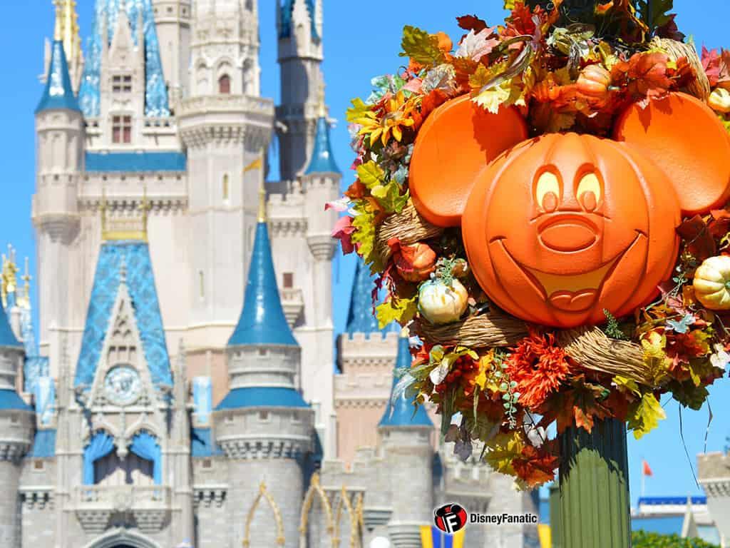 Walt Disney World Resort - Cinderella Castle and Flowers