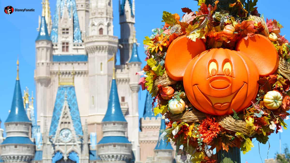 Cinderella Castle And Flowers HD Screen