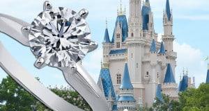 Cinderella's Castle Romance