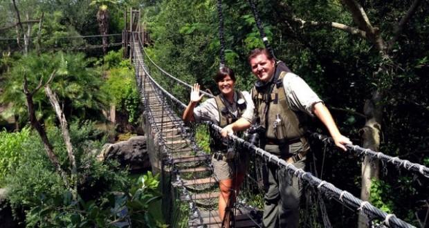 Wild African Safari Bridge