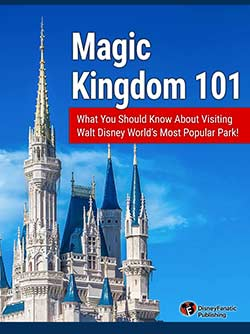 Magic Kingdom 101