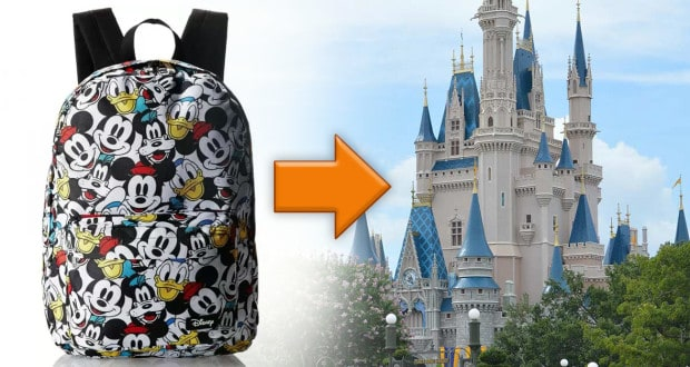 Disney Castle and Backpack