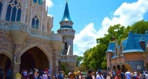 Disney Castle Crowd