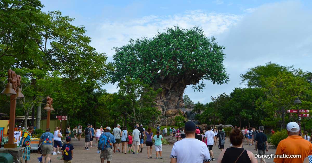 Tree of Life People