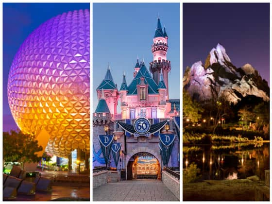 Disney adult theme park