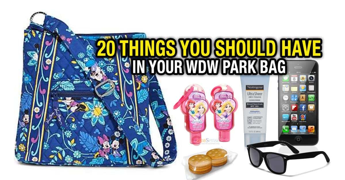 20 Things In Disney Park Bag