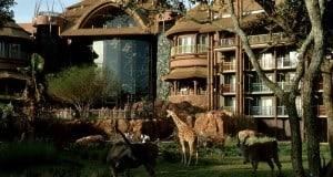 Savannah Animal Kingdom