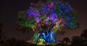 pandora _ tree of life _ animal kingdom _ disney fanatic