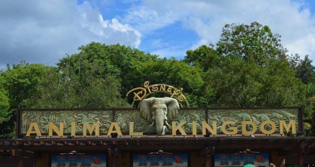 Animal Kingdom Sign