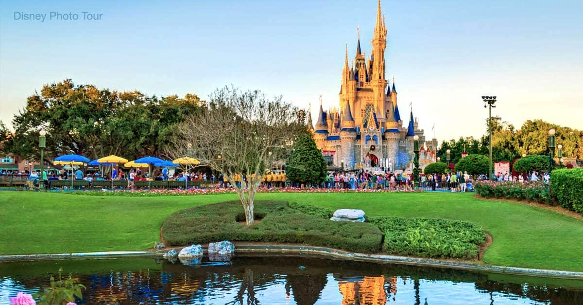 a trip to disney world essay Free essay: i remember planning for this day for about two years when i would  finally get the chance to be with my best friends and take a road-trip to.