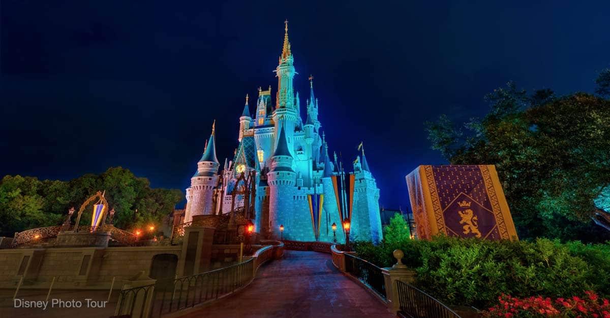 Disney World Castle Night