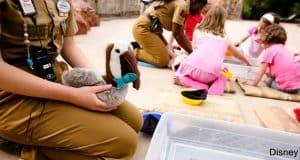 Disney Childcare