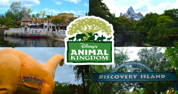 Animal Kingdom _ Disney Fanatic