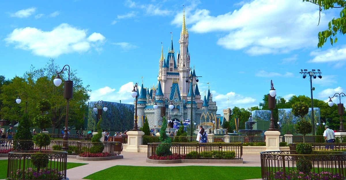 Cinderella Castle Hub