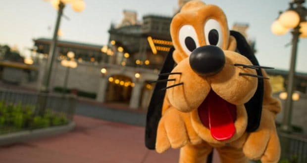 Pluto Disney World