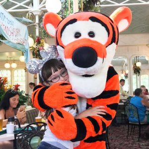 Terms given to Disney\'s character interactions where you either dine with a character or stand in line to greet one in the parks.