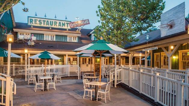 Animal Kingdom Restaurants 101