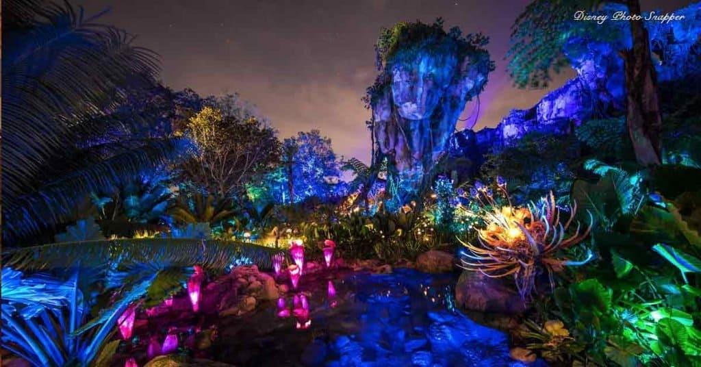 Pandora Night