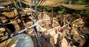 The Boneyard Playground