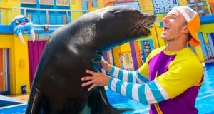SeaWorld Seamore and Clyde