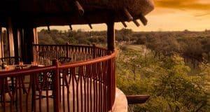 Animal Kingdom Jambo Villas