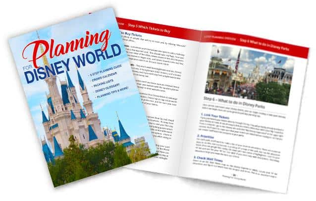 Planning For Disney World