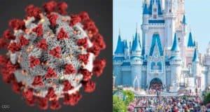 Corona Virus Castle