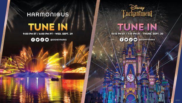 Walt Disney World livestream
